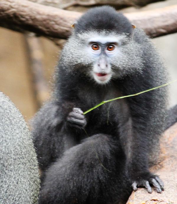 Zoo tp 14