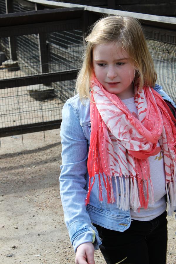 Zoo tp 23
