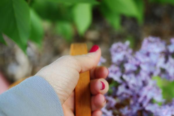 Lilacs tp 1